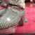Liberace Shoes